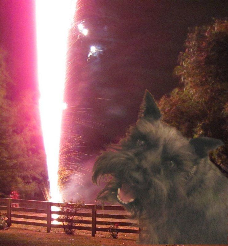 Chip Firework fountain 7-1-2012 9-25-39 PM