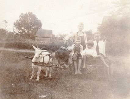 unknown children and a goat wagon