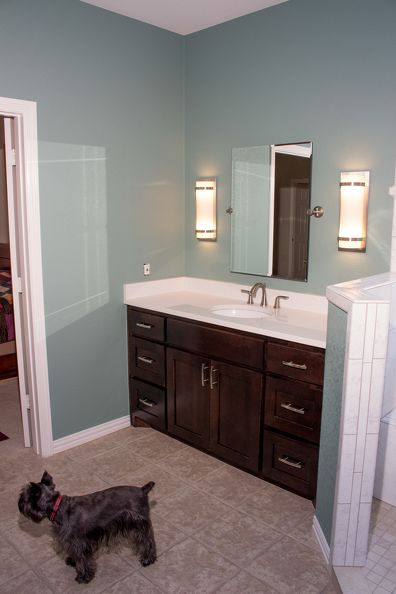 042-BathroomRemodel-IMG 8494
