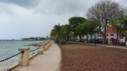 203-Frederiksted-7251