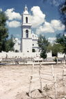 a mission or cathedral with a newly planted tree 1955