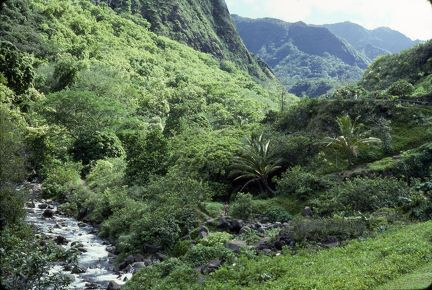 1977 Hawaii Iao Valley